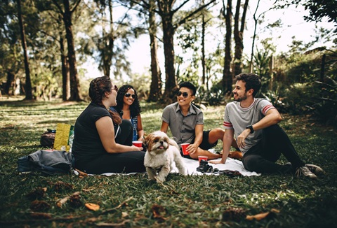 Picnic-outdoors.jpg
